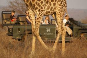 Zero Emissions Safari Vehicle