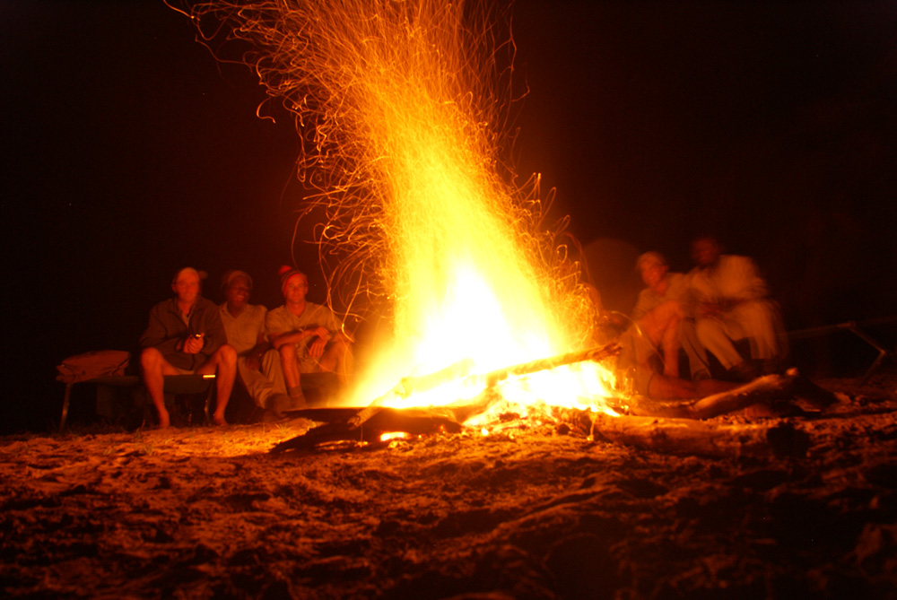 Bushveld Bonfire under starlit sky