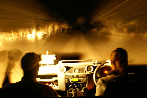 Night-Time-Game-Driving-Rich-Laburn