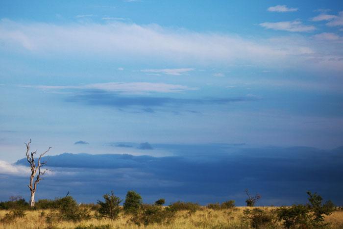 Blue Skied Landscape by Rich Laburn