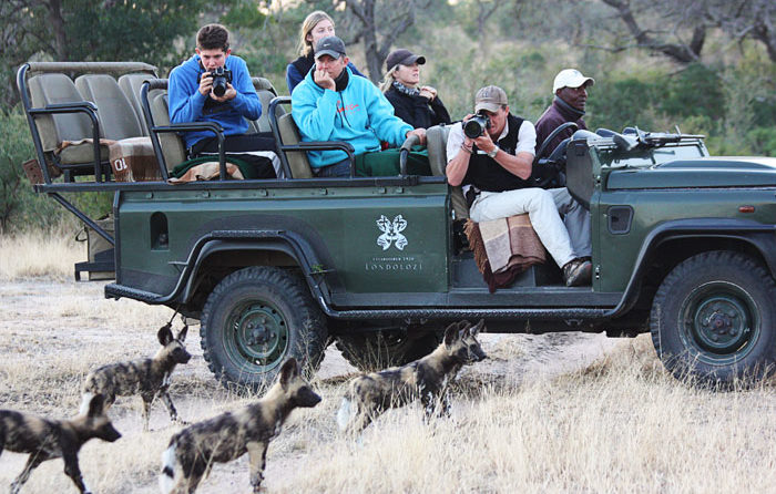 Photographing Wild Dogs by Shan Varty