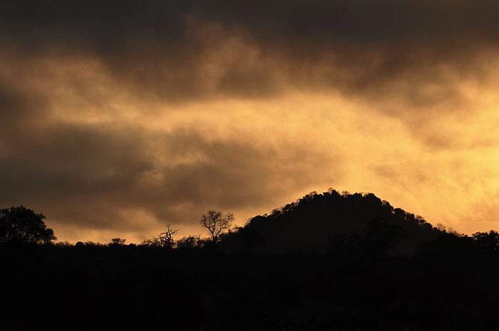 Stweiss Koppie at Sunrise by Francesca Grima