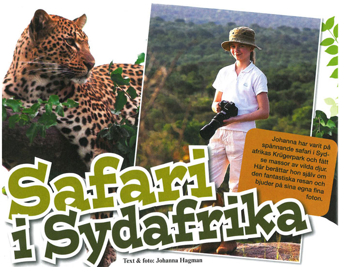 Safari in Syd Afrika