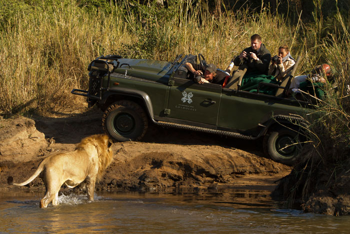 David photographing the Majingilane male lions crossing the Sand River in style by Adam Bannister
