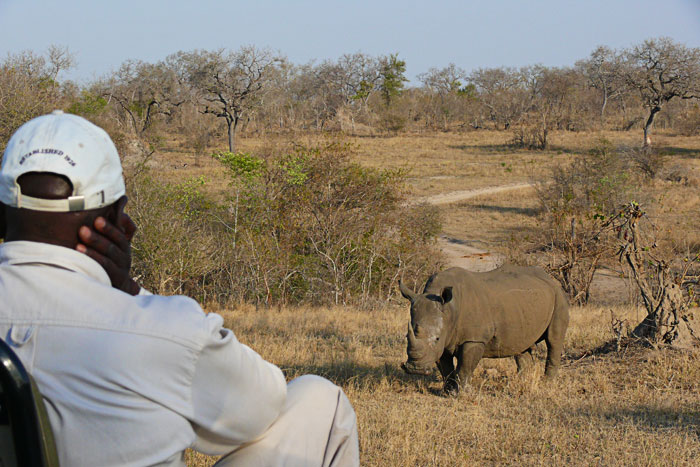 tracker-watching-rhino