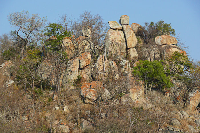 Granite-koppies