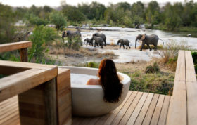 Room with a View - Watching elephants from the Granite Suite Outdoor Bathtub - Ryan Graham