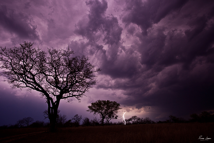Rich Laburn Lightning Bolt in the Lowveld