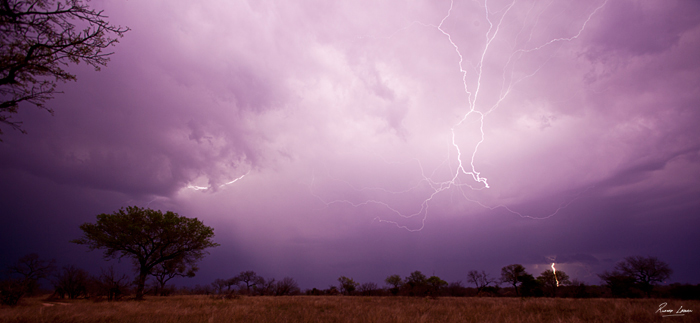 Rich Laburn Sheet Lightning in the Lowveld