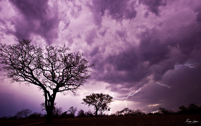 Rich Laburn Lightning in the Lowveld