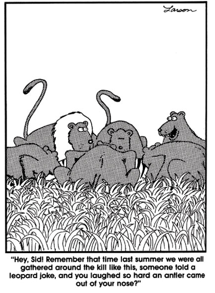 Gary Larson Far Side Cartoon African Lions