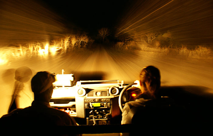 Driving through the bush in an open Landrover, at night can turn into a quite surreal experience at times - Rich Laburn