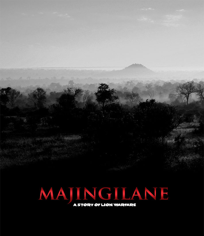 Majingilane-The Story of Lion Warfare