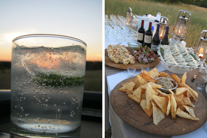 Sunset Drinks by Anna Ridgewell