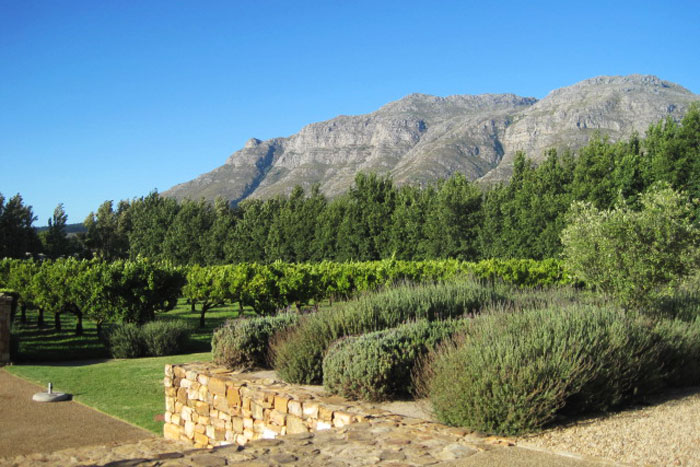 The Helderberg Mountains from the Waterford Venue
