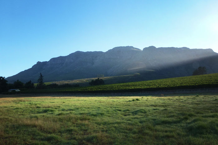 The Waterford Wine Estate