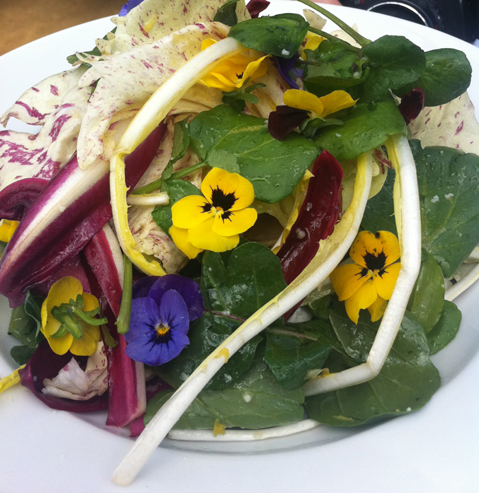 Salad of Dandelion Leaves