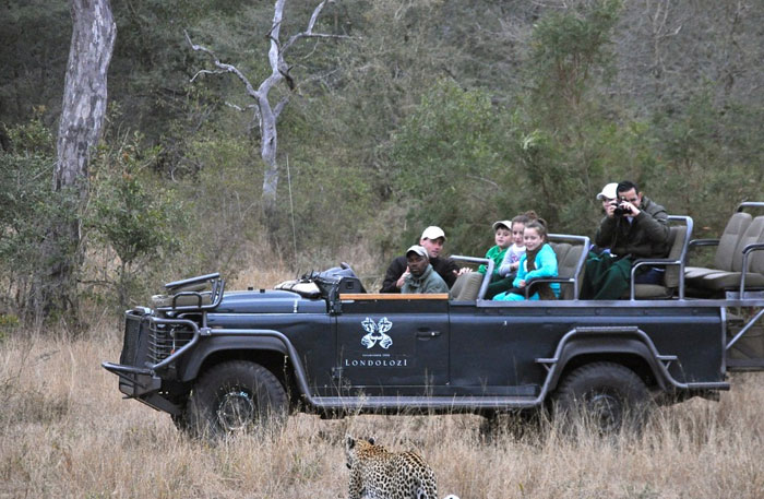Ranger Dean Smithyman showcases one of the Leopards of Londolozi to members of our cubs den