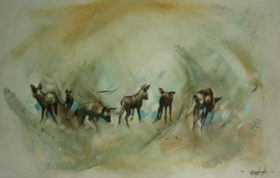 Wild Dogs by Emily Lamb