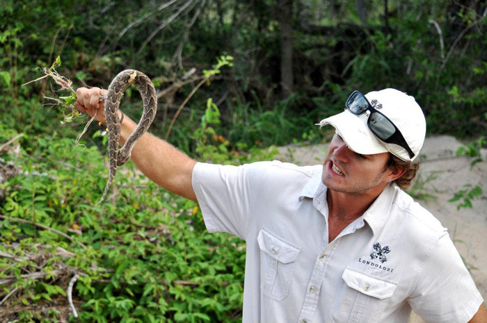Discussing one of Londolozi's most dangerous snakes, the puff-adder. Luckily this one was dead.