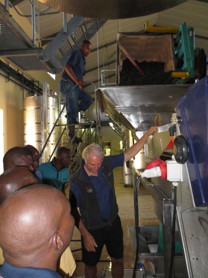 Team learning about the wine making process