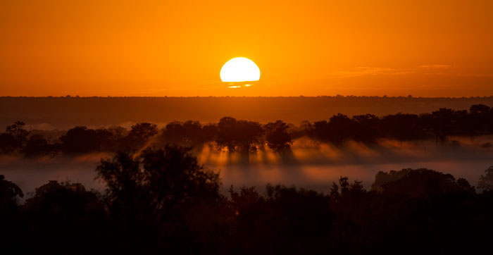 Sunrise breaks over the mist at Londolozi. This is my favourite time of year; getting out before the sun is up combined with the dawn chill make head out on drive just that tiny bit more exciting for me.