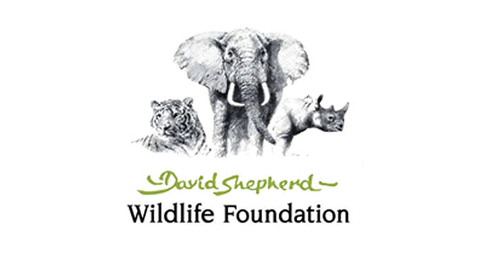 David Shepard Wildlife Foundation