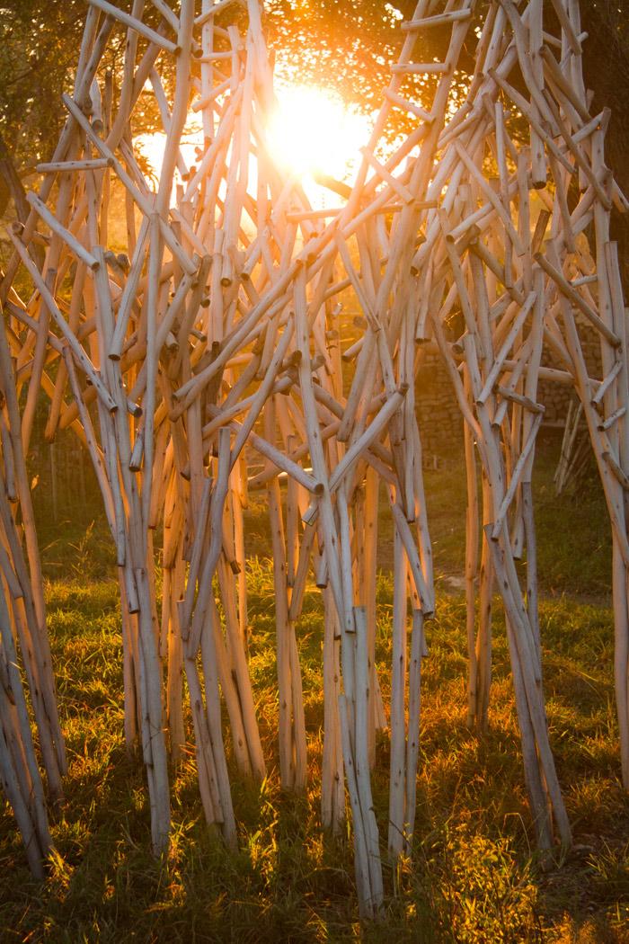 The winter sun shining through the legs of the Londolozi Journey