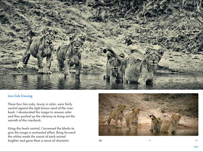 ...along with practical examples of wildlife photographs 'before' and 'after'