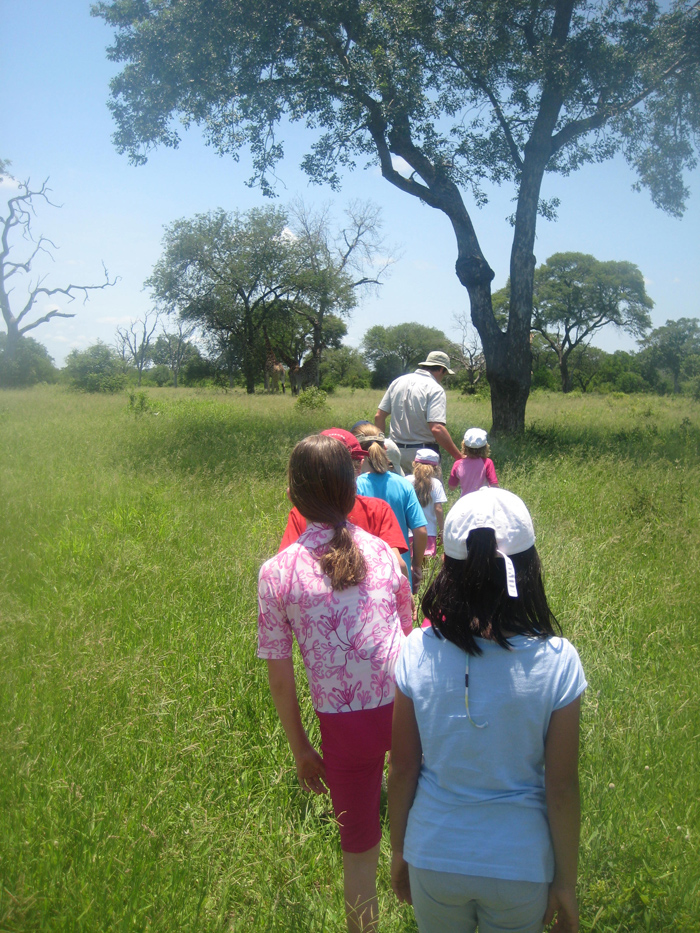 Rangers can take the children on tracking safaris - not straying too far from their vehicle!