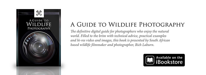 "Pre Safari Reading ""A Guide to Wildlife Photography"""