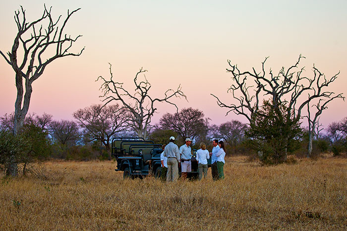 Afternoon drinks stop on game drive