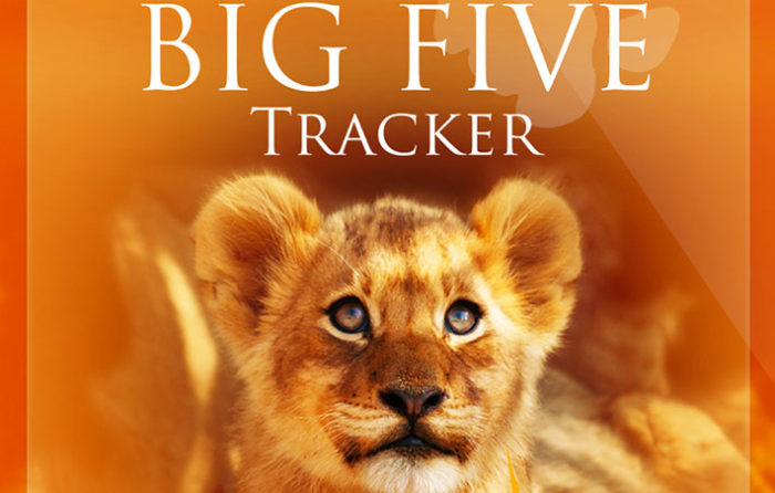 Junior Big Five Tracker