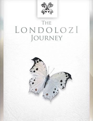 The Londolozi Journey