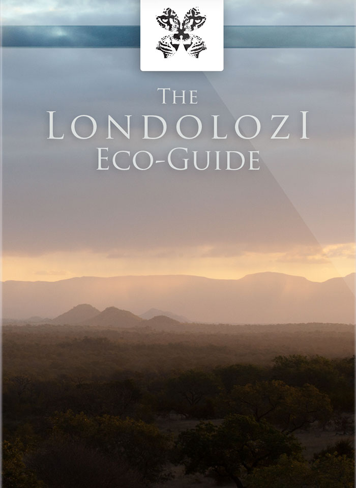The Londolozi Eco-Guide