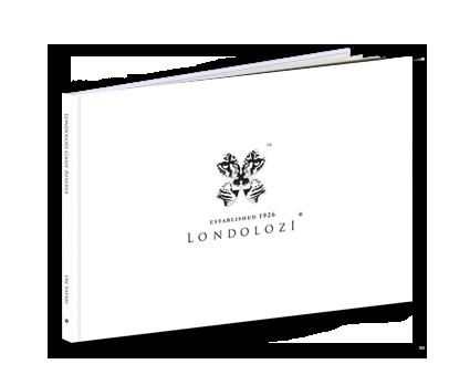 Londolozi+A4+cover_pixfizz-1