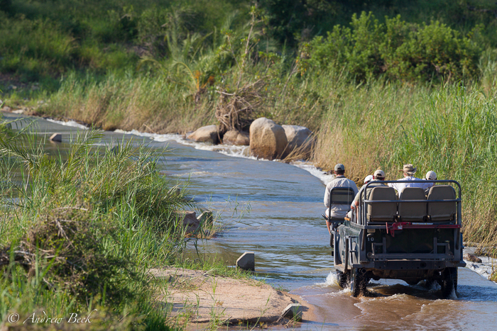 The-Human-Element-of-a-Wildlife-Safari