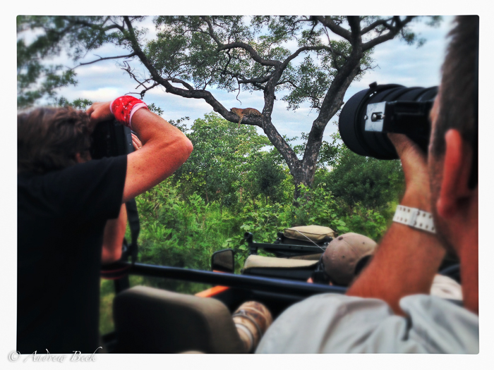 The-Human-Element-of-a-Wildlife-Safari-3-2