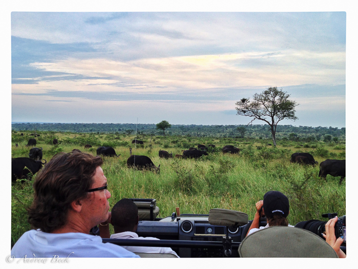 The-Human-Element-of-a-Wildlife-Safari-2-2