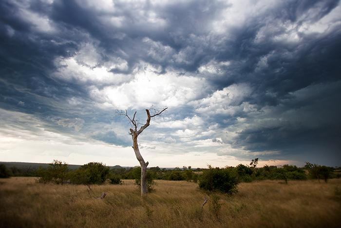 Stormy Sky - Rich Laburn