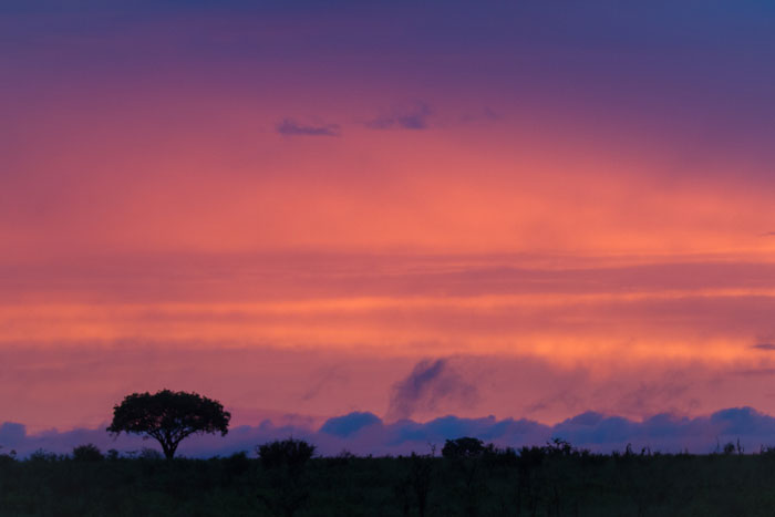 A beautiful sunset over the south-west grasslands.