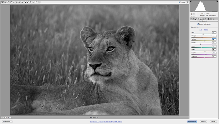 Camera Raw offers you the ability to convert your image to Grayscale and individually manipulate color tone within your black and white image.