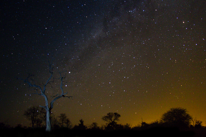 Starry skies. Photograph by Kate Neill