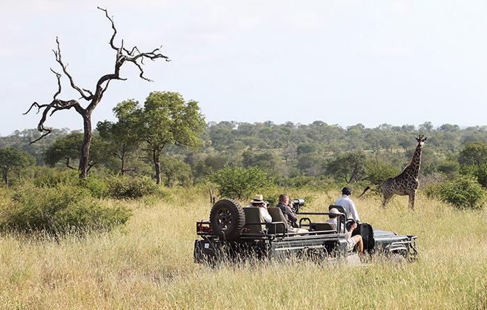 Eco-Tourism Londolozi