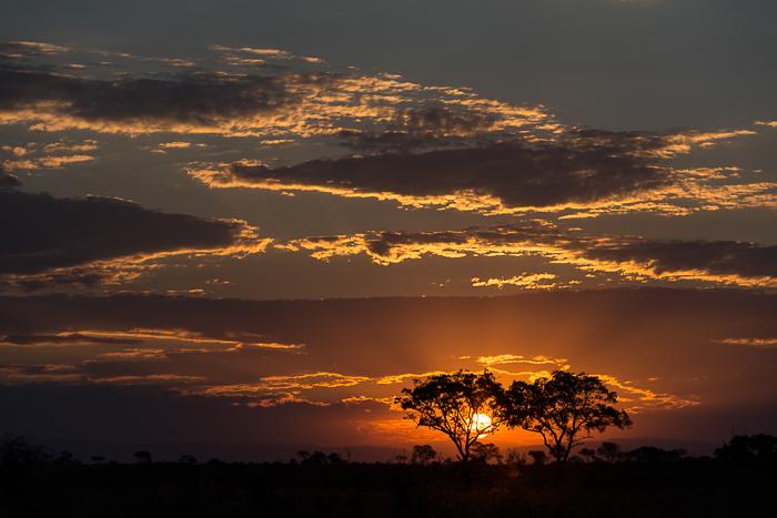 Sunsetsimon