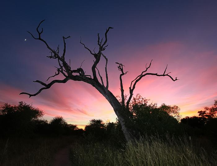 sunset Rich Laburn