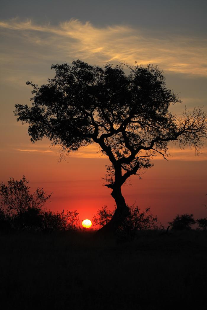 Landscape Sunset Rich Laburn