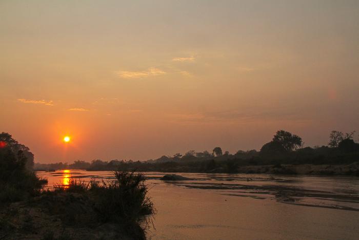 Finfoot Sunrise