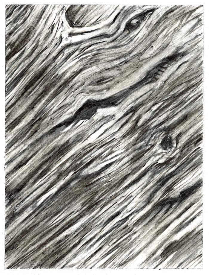 Spirit-of-Leadwood