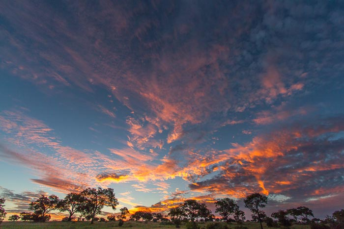 The beauty of a sunset in the African bushveld Mike Sutherland
